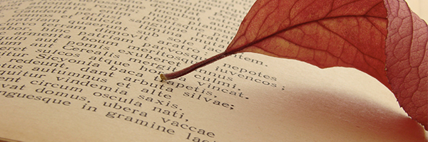 leaf on page of book